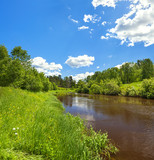 rural summer landscape with forest, river, blue sky and white clouds