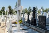 Cemetery Gravestones - 199742808