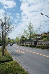 大阪 桃山台付近 道路