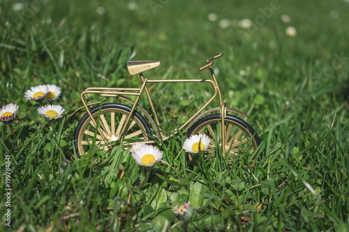 Foto op Plexiglas Fiets Close up view of a golden brown metal bike or bicycle decoration on a meadow blooming with daisies, hello spring or April background