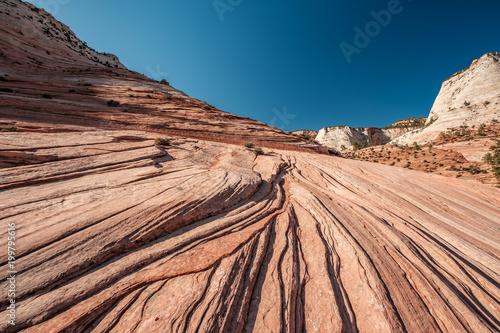 Krajobraz w Zion National Park