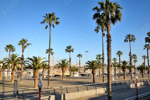 Fotobehang Barcelona Embankment with Palms. Barcelona, Spain.