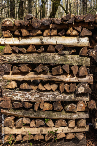 In de dag Brandhout textuur wood piles properly stacked in the forest