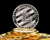 Value of Litecoin