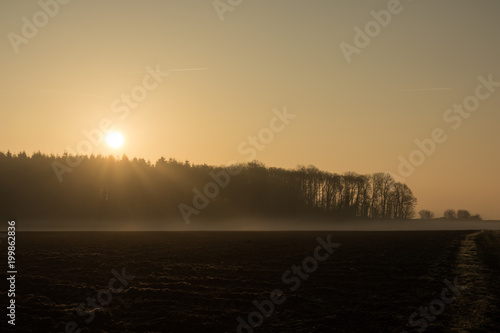 Aluminium Lente country landscape in the morning in the mist