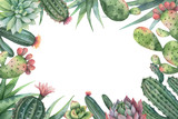 Watercolor vector card of cacti and succulent plants isolated on white background. - 199894238