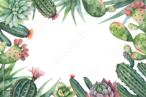 Watercolor vector card of cacti and succulent plants isolated on white background.