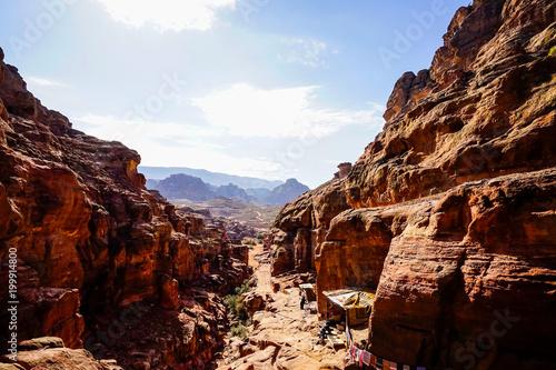 Plexiglas Bruin The Petra remains