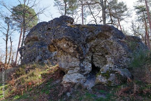 Foto op Plexiglas Grijs Le Carrosse rock in fontainebleau forest