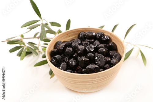 black olive and branch - 199936274