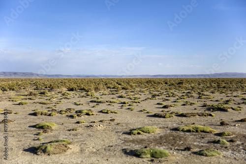 Dali Desert in Bolivia - 199938435