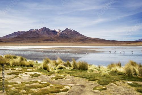Foto op Aluminium Bergen Laguna Colorada in Bolivia