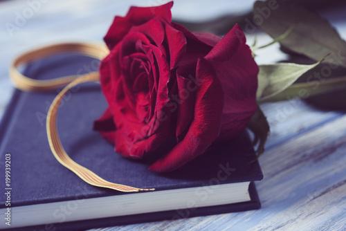 Foto Murales red rose, catalan flag and book.