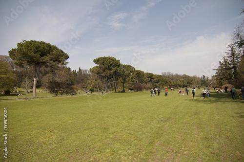 Foto Murales parco Sicurtà Valeggio sul Mincio Verona Italia