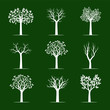Set white Trees on green background. Vector Illustration.