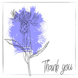 vector drawing cornflower