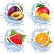 Mango, watermelon, orange, plum in water splash. Fresh fruits realistic vector icon set