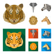Tiger, lion, elephant, zebra, Realistic animals set collection icons in cartoon,flat style vector symbol stock illustration web.