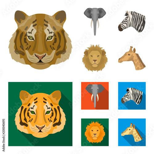 Tygrys, lew, słoń, zebra, realistyczne zwierzęta zestaw ikon kolekcji w kreskówka, płaski styl wektor symbol ilustracji www.