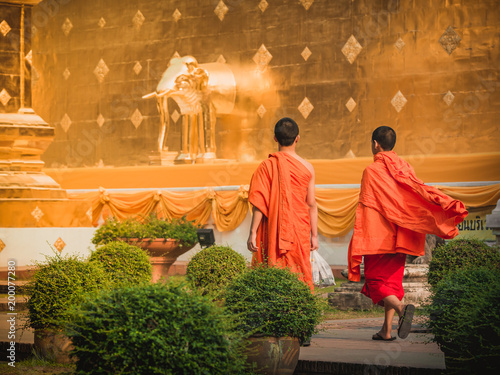 Fotobehang Boeddha Buddhist monks walk at the Buddhist Temple in Chiang Mai on a sunrise