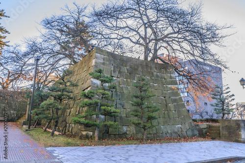 Fotobehang Khaki 秋の福井城跡の風景