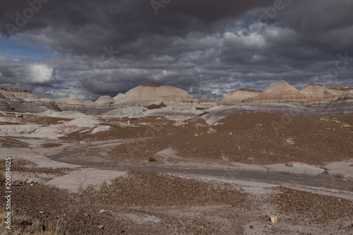 Fotobehang Diepbruine Painted Desert at Petrified Forest National Park with cloudy skies in background