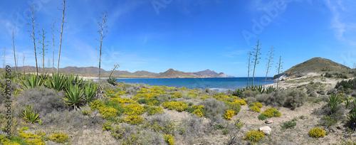 playa genoveses almería primavera panorámica 2-f18 - 200132069