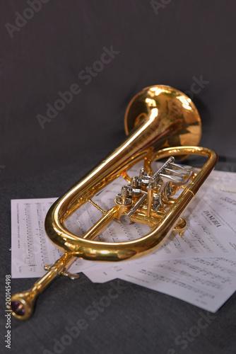 Flügelhorn mit Noten - 200145498