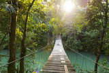 Tranquil Forest Footbridge