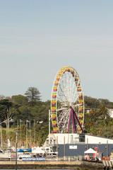 Ferris Wheel vert