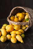 Collection of lemons in the basket - 200205469
