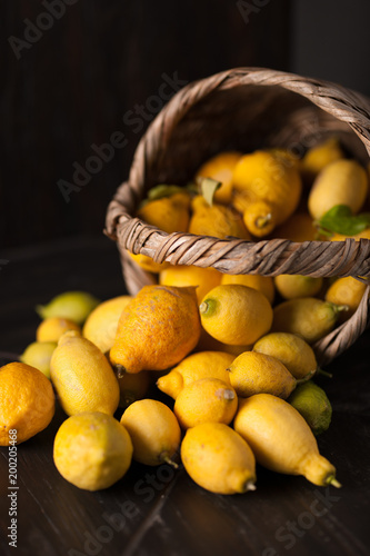 Collection of lemons in the basket - 200205468