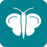 Butterfly II Icon
