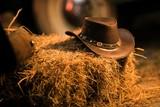Cowboy Hat Western Wear - 200229032