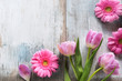 Tulips and gerbera on gray vintage planks