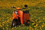 Moped Schwalbe - 200246879