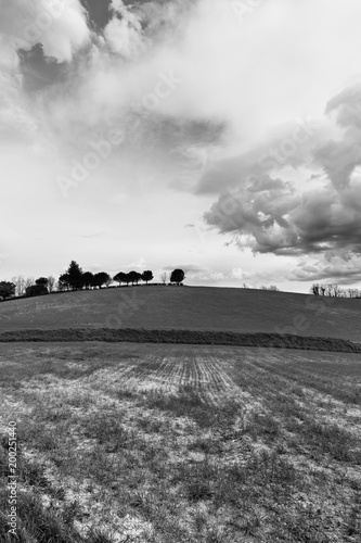 Foto op Plexiglas Grijs Early spring morning in the countryside, fields and cloudy sky