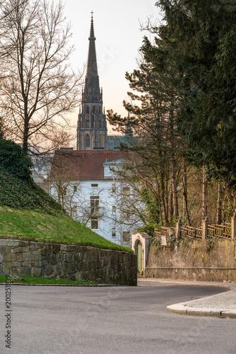 Der Linzer Dom vom Schlossberg gesehen Poster