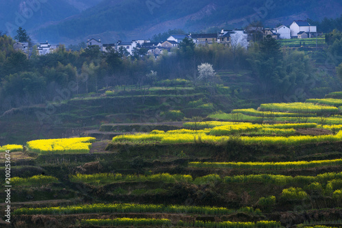 Foto op Plexiglas Ochtendgloren the spring village of south of Anhui province in China