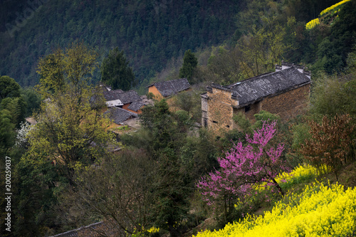 Plexiglas Nachtblauw the spring village of south of Anhui province in China