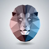 Abstract polygonal tirangle animal lion. Hipster animal illustration.