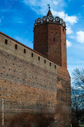 Zamek Królewski w mieście Łęczyca, Polska Poster