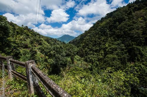 Błękitne góry w Karaiby w Jamajka
