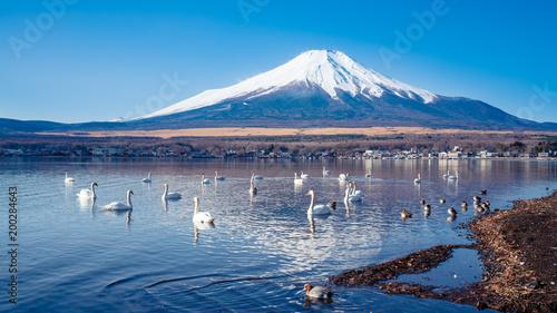 Foto op Aluminium Bergen Stunning View of Fuji Mountain