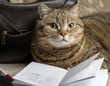 The cat is lying with an open diary and pen on the background of a leather handbag. Selective focus.