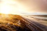 Dunes at Hvide Sande beach at sunrise