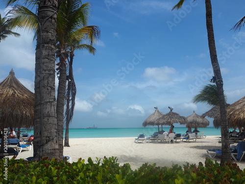 Aluminium Tropical strand Palm Beach Aruba