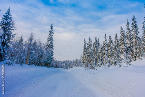 Outdoor view of winter road covered with heavy snow in pine tree in the forest - 200318459