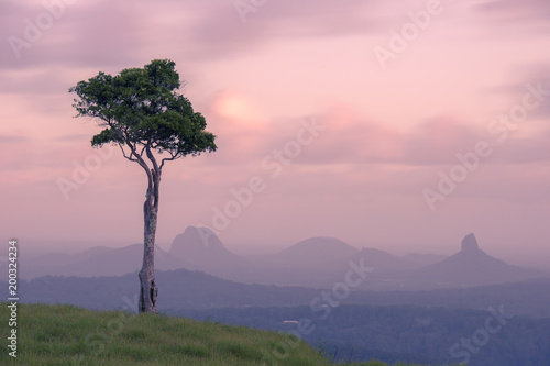 View of one tree hill on a foggy day in the Sunshine Coast. - 200324234