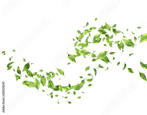 Fotobehang Abstract wave Green Flying Leaves
